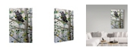 "Trademark Global Jeff Tift 'Misty Aspen' Canvas Art - 22"" x 32"""