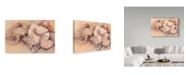 "Trademark Global Joanne Porter 'Sea Shells' Canvas Art - 30"" x 47"""