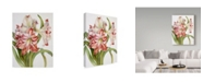 """Trademark Global Joanne Porter 'Red And White Amaryllis' Canvas Art - 35"""" x 47"""""""