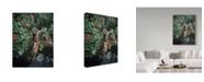 "Trademark Global Ron Parker 'Alpine Summer' Canvas Art - 35"" x 47"""