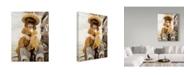 "Trademark Global Sharon Forbes 'Kiss And Make Up' Canvas Art - 35"" x 47"""