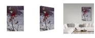"""Trademark Global Wilhelm Goebel 'Cardinal And Milkweed' Canvas Art - 22"""" x 32"""""""
