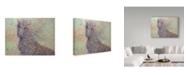 "Trademark Global James W. Johnson 'Wildhorse' Canvas Art - 32"" x 24"""