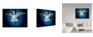 "Trademark Global J Hovenstine Studios 'Swan Lake' Canvas Art - 47"" x 35"""
