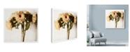 "Trademark Global Michael Harrison 'Floral Sunflowers White Soft' Canvas Art - 35"" x 35"""