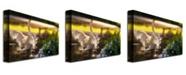 "Trademark Global Lois Bryan 'Swan Lake' Canvas Art - 32"" x 22"""
