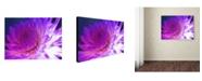 "Trademark Global Kathy Yates 'Mod Dahlia' Canvas Art - 47"" x 30"""