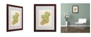 """Trademark Global Michael Tompsett 'Ireland I' Matted Framed Art - 20"""" x 16"""""""