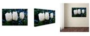 "Trademark Global Kurt Shaffer 'Three Parrot Tulips' Canvas Art - 32"" x 22"""