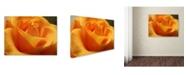 """Trademark Global Monica Fleet 'Mother's Embrace' Canvas Art - 32"""" x 24"""""""