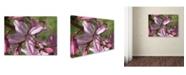 """Trademark Global Monica Fleet 'Refined Grace' Canvas Art - 32"""" x 24"""""""