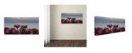 """Trademark Global Kurt Shaffer 'Sunset Roses' Canvas Art - 24"""" x 47"""""""