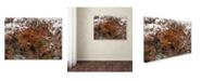 """Trademark Global Kurt Shaffer 'Early Snow Fall' Canvas Art - 24"""" x 32"""""""