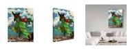 "Trademark Global Jake Hose 'Skully Bird' Canvas Art - 14"" x 19"""