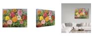 "Trademark Global Joanne Porter 'Zinnias In A Pebbly Sky' Canvas Art - 14"" x 19"""