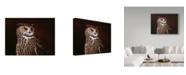 """Trademark Global Wilhelm Goebel 'Eagle Owl' Canvas Art - 14"""" x 19"""""""