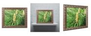 """Trademark Global Monica Mize 'The Start' Ornate Framed Art - 11"""" x 14"""""""