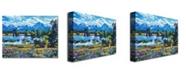 """Trademark Global David Lloyd Glover 'Wildflower Valley' Canvas Art - 32"""" x 24"""""""