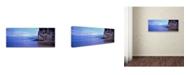 "Trademark Global David Evans 'Kaiteriteri Dusk-NZ' Canvas Art - 19"" x 6"""