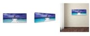 "Trademark Global David Evans 'Breakwater-Jumeirah Vittaveli' Canvas Art - 16"" x 47"""