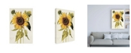 "Trademark Global Nicolas Robert Helianthus Annuus Sunflower Canvas Art - 36.5"" x 48"""