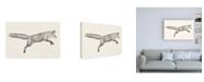 "Trademark Global Victoria Borges Flying Fox I Canvas Art - 15.5"" x 21"""