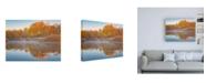 "Trademark Global Darren White Photography Autumn's Reflection Canvas Art - 36.5"" x 48"""