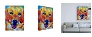 "Trademark Global DawgArt Sheamus Canvas Art - 36.5"" x 48"""