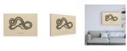 "Trademark Global Wild Apple Portfolio Vintage Boa Constrictor Canvas Art - 36.5"" x 48"""