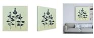 "Trademark Global Julia Purinton Botanical Study IV Sage Canvas Art - 15.5"" x 21"""