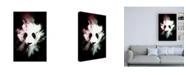 "Trademark Global Philippe Hugonnard Wild Explosion Collection - the Panda Canvas Art - 15.5"" x 21"""