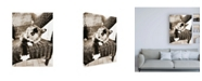 "Trademark Global Jim Dratfield Kitty IV Canvas Art - 36.5"" x 48"""