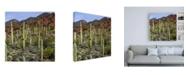 "Trademark Global Mitch Catanzaro Santa Catalina Mountains Canvas Art - 19.5"" x 26"""
