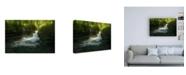 "Trademark Global Enrico Fossat Stream of Life Water Canvas Art - 15.5"" x 21"""