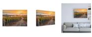 """Trademark Global John Gavrili Vineyard Sunrise Canvas Art - 15.5"""" x 21"""""""