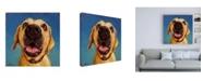 """Trademark Global Lucia Hefferna Follow Your Nose 2 Canvas Art - 15.5"""" x 21"""""""