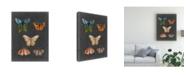 """Trademark Global Naomi Mccavitt Butterflies on Slate II Canvas Art - 37"""" x 49"""""""
