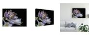 """Trademark Global Kurt Shaffer Hosta Flower Unfolding Canvas Art - 20"""" x 25"""""""
