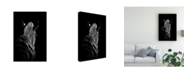 "Trademark Global Christian Meermann Stepping Down 6 Canvas Art - 15"" x 20"""