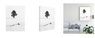 "Trademark Global Marc Pelissier Le Solitaire Canvas Art - 15"" x 20"""