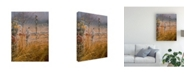 """Trademark Global Michael Budden Autumn Mist Overgrown Canvas Art - 15"""" x 20"""""""