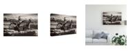 "Trademark Global Monte Nagler Cloud Dancers Canvas Art - 37"" x 49"""