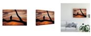 "Trademark Global Monte Nagler Eagle Sunset Canvas Art - 20"" x 25"""