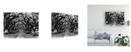 "Trademark Global Monte Nagler Path in the Oaks Louisiana Canvas Art - 15"" x 20"""