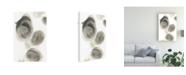 """Trademark Global June Erica Vess Water Stones I Canvas Art - 37"""" x 49"""""""