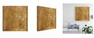 "Trademark Global Pablo Esteban White Flowers Over Brown Canvas Art - 36.5"" x 48"""