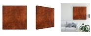 "Trademark Global Pablo Esteban Red Line Art Texture Canvas Art - 15.5"" x 21"""