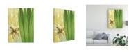 "Trademark Global Pablo Esteban Tall Narrow Palm Canvas Art - 27"" x 33.5"""