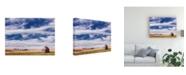 "Trademark Global PH Burchett Farm and Field I Canvas Art - 36.5"" x 48"""