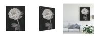 "Trademark Global Ethan Harper Black and White Flowers II Canvas Art - 19.5"" x 26"""